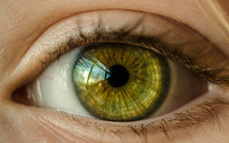 Cheap Vision Insurance